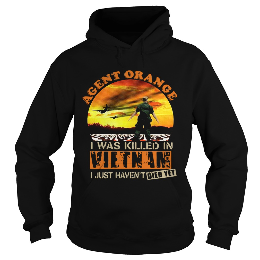 Agent Orange I Was Killed In Vietnam I Just Havent Died Yet  Hoodie