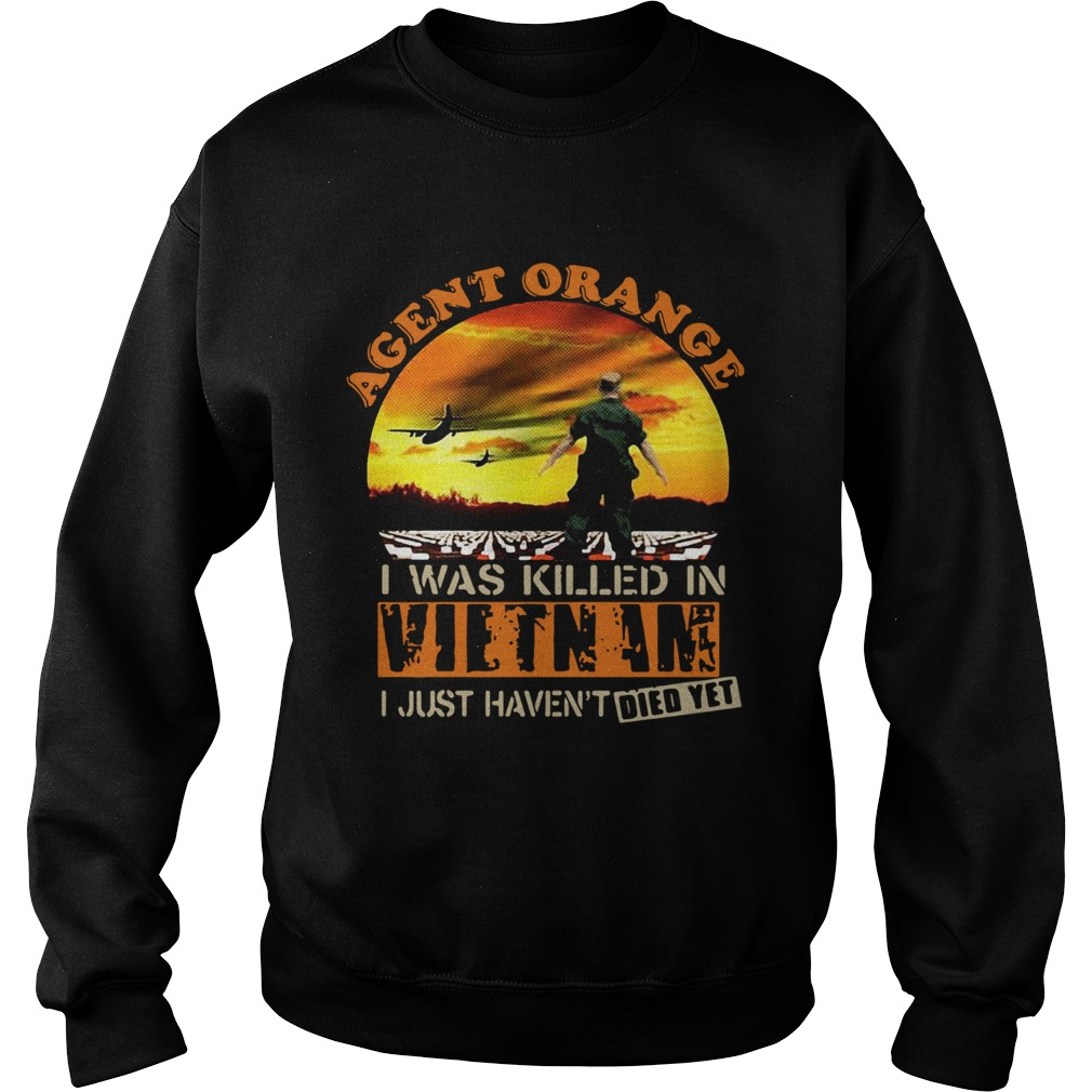 Agent Orange I Was Killed In Vietnam I Just Havent Died Yet  Sweatshirt